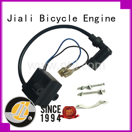 Jiali 2 stroke gas engine spare parts manufacturers for motor car