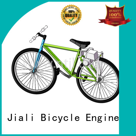 Wholesale custom bicycle gasoline engine engine suppliers for car